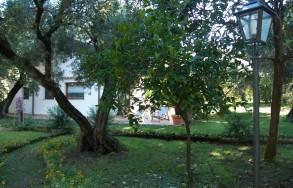 Giardino dell'appartamento Bouganville