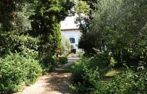 Viale del Villino degli Aranci